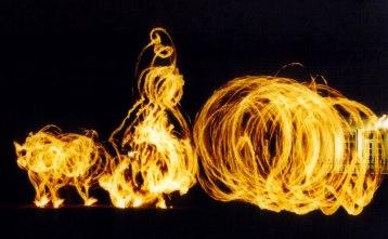 Australopithecus Fire