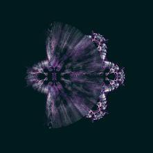 Fractal 280220 Purple Moths 003