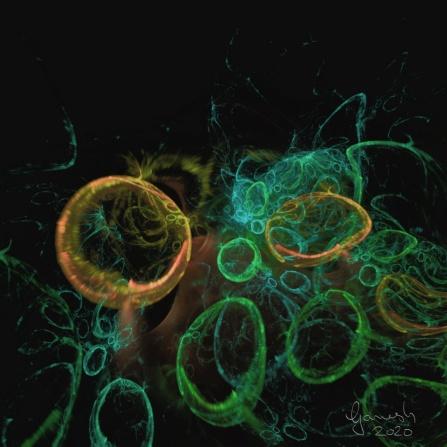 Fractal 120320 Bubbles 03