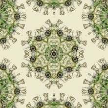 Mandala Rorrim 270220 003 Flower (RMX Mandala Virus 150220)